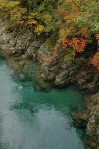 小国町の温身平(ぬくみだいら)近くの渓流