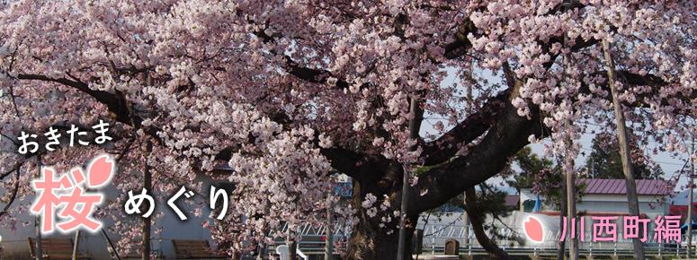 おきたま桜めぐり川西町編