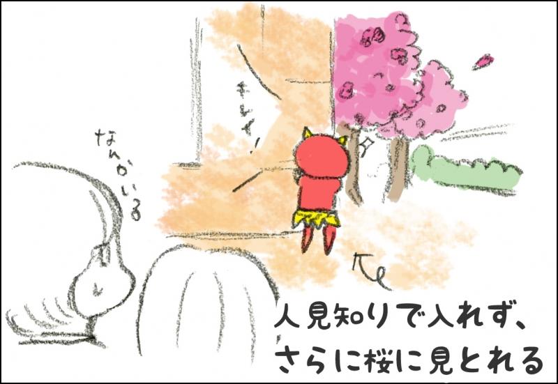 人見知りで入れず、さらに桜に見とれる