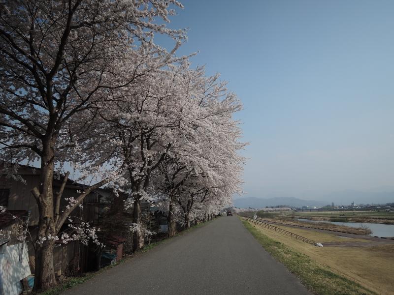 松川河川敷